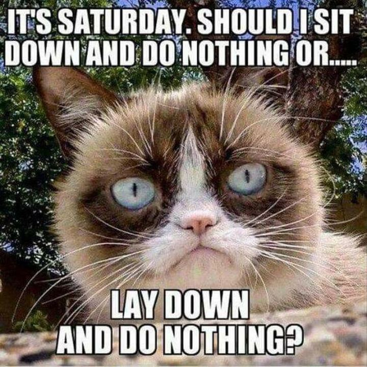 "101 Saturday Memes - ""It's Saturday. Should I sit down and do nothing or...Lay down and do nothing?"""