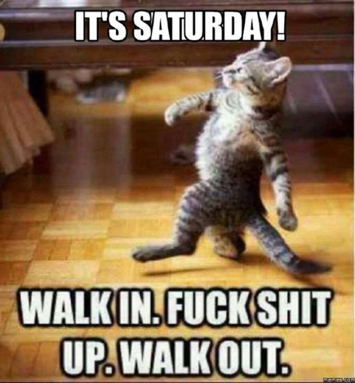 "101 Saturday Memes - ""It's Saturday! Walk-in. [censored] up. Walk-out."""