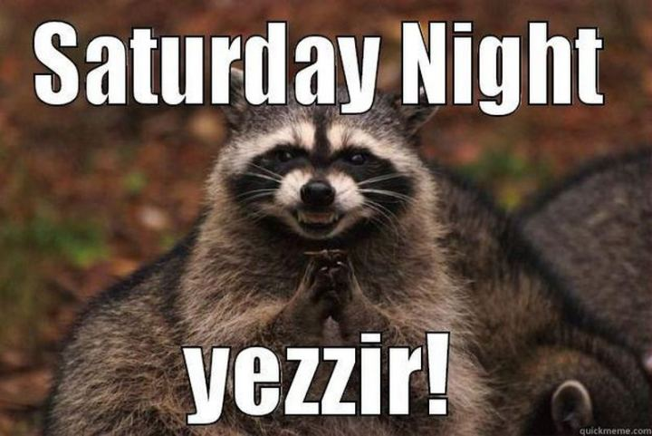 "101 Saturday Memes - ""Saturday night. Yessir!"""
