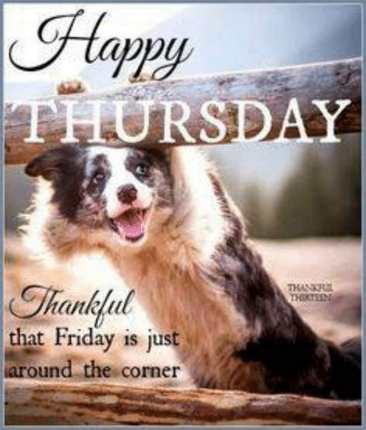 "101 Thursday Memes - ""Happy Thursday. Thankful that Friday is just around the corner."""