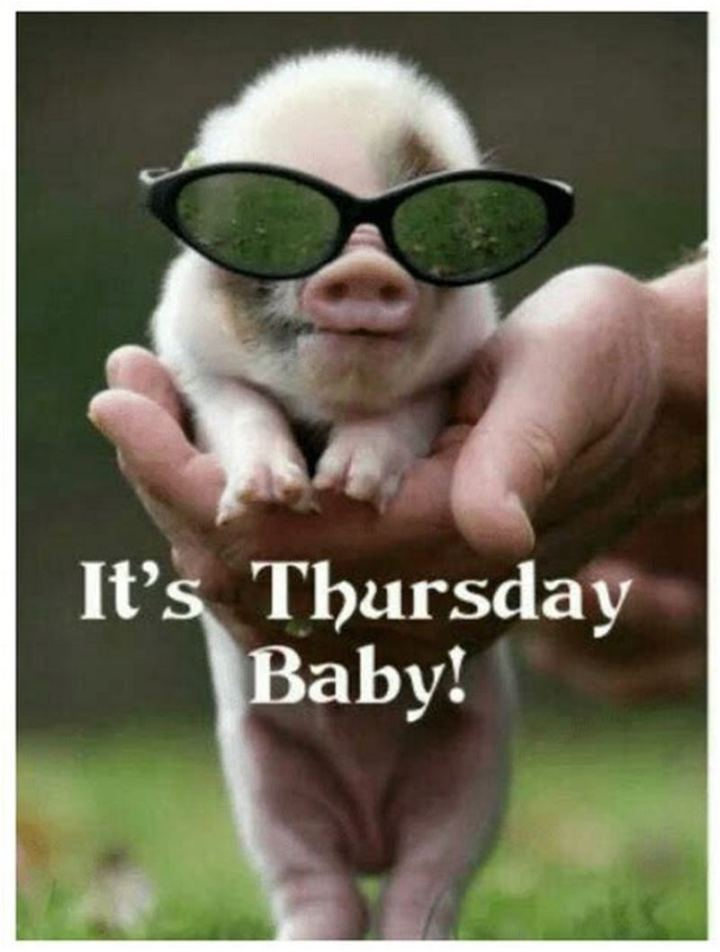 "101 Thursday Memes - ""It's Thursday baby!"""