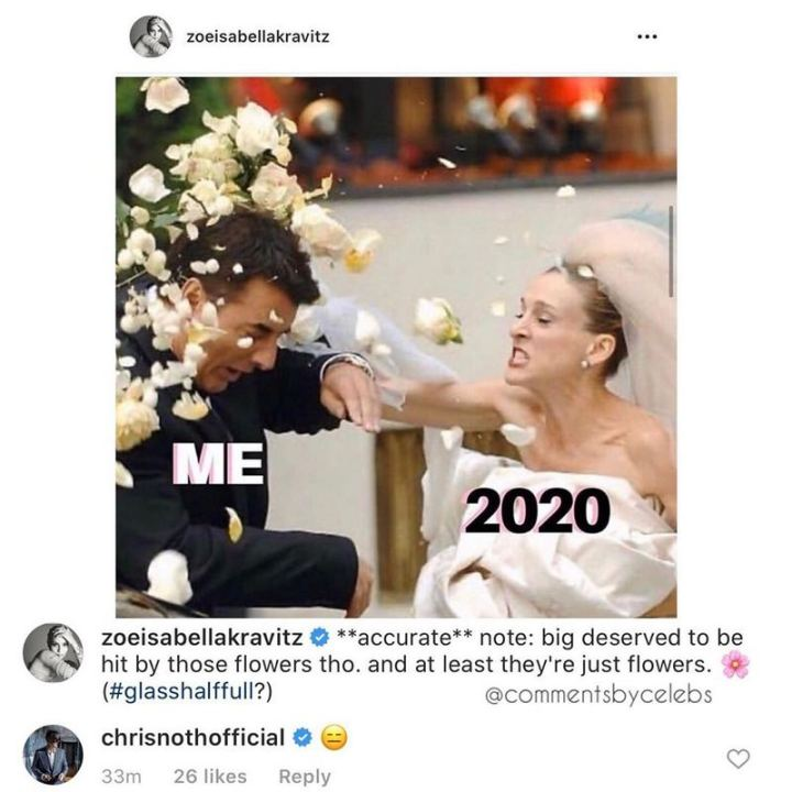 """53 Coronavirus Memes - """"Me. 2020. **accurate** note: big deserved to be hit by those flowers tho. and at least they're just flowers. Glass half full? :)"""""""