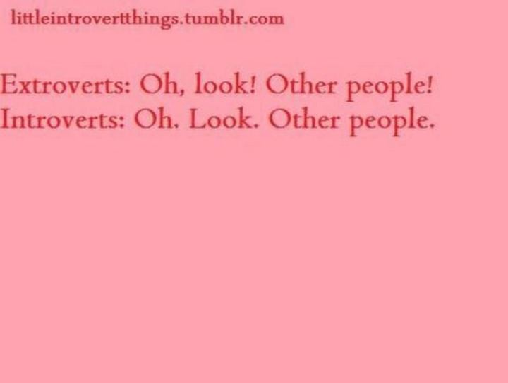 "75 Introvert Memes - ""Extroverts: Oh, look! Other people! Introverts: Oh. Look. Other people."""