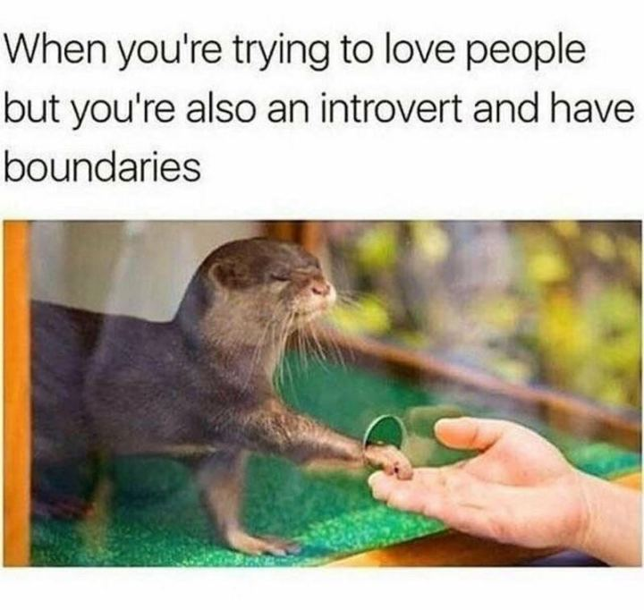 "75 Introvert Memes - ""When you're trying to love people but you're also an introvert and have boundaries."""