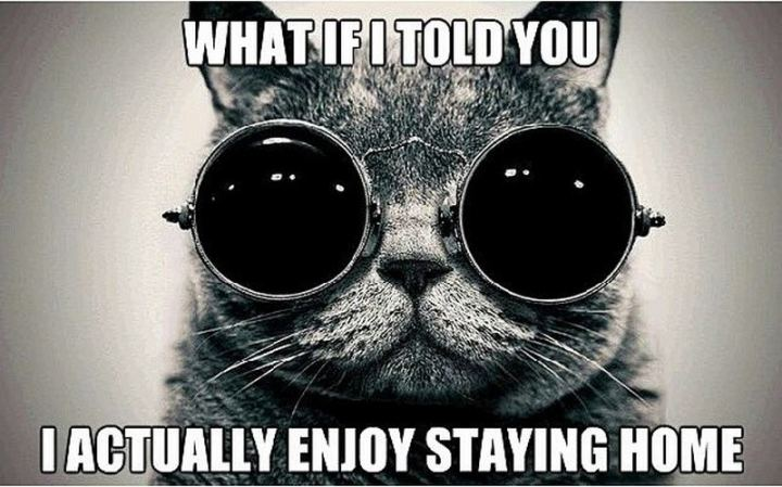 "75 Introvert Memes - ""What if I told you I actually enjoy staying home."""