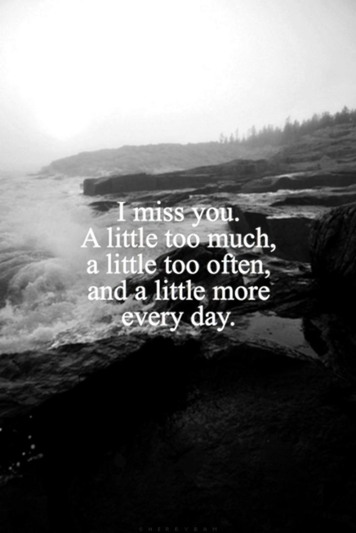 "45 I Miss You Quotes - ""I miss you a little too much, a little too often, and a little more each and every day."" - Unknown"