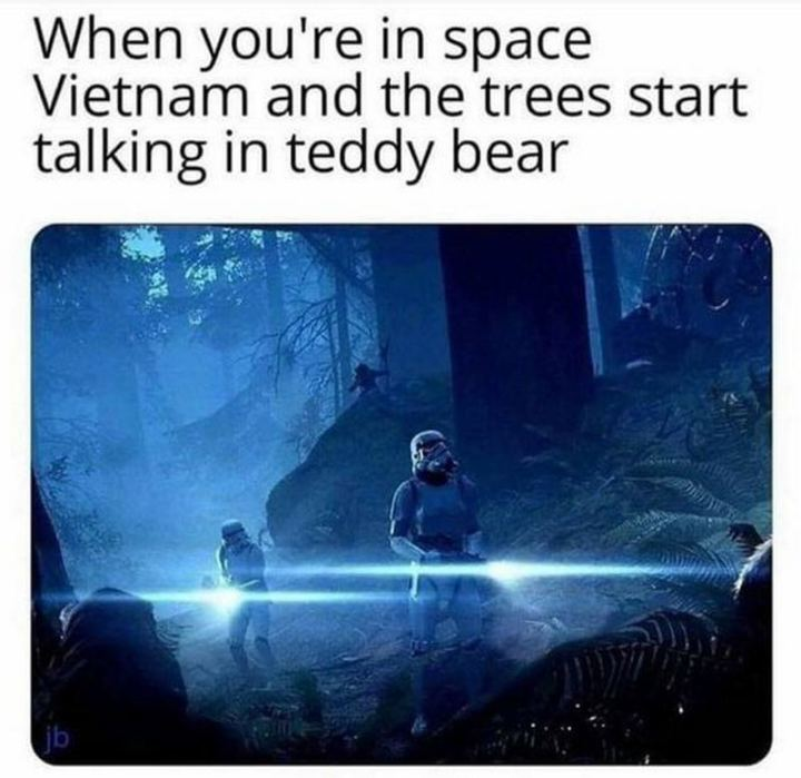 """61 Star Wars Memes - """"When you're in space Vietnam and the trees start talking in 'teddy bear'."""""""