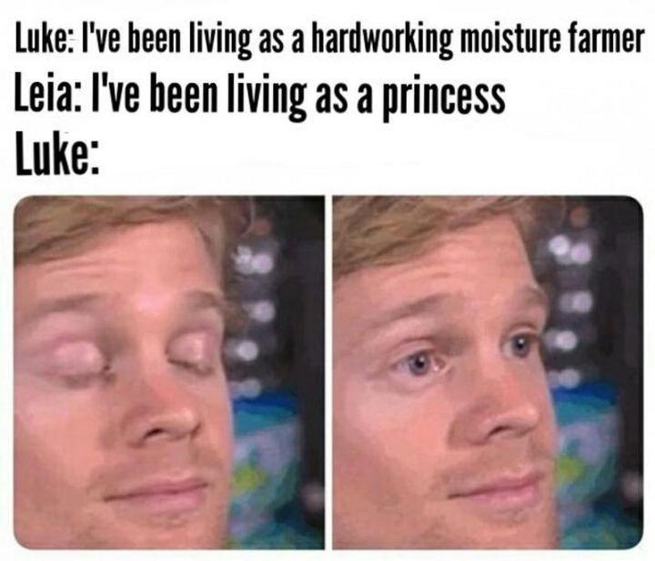 "61 Star Wars Memes - ""Luke: I've been living as a hardworking moisture farmer. Leia: I've been living as a princess. Luke:"""