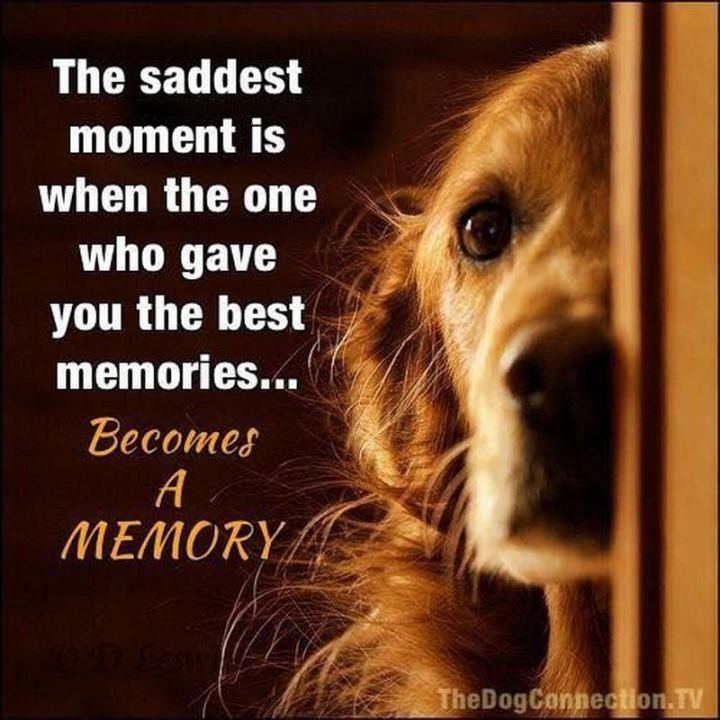 "77 ""Thinking of You"" Memes - ""The saddest moment is when the one who gave you the best memories...Becomes a memory."""