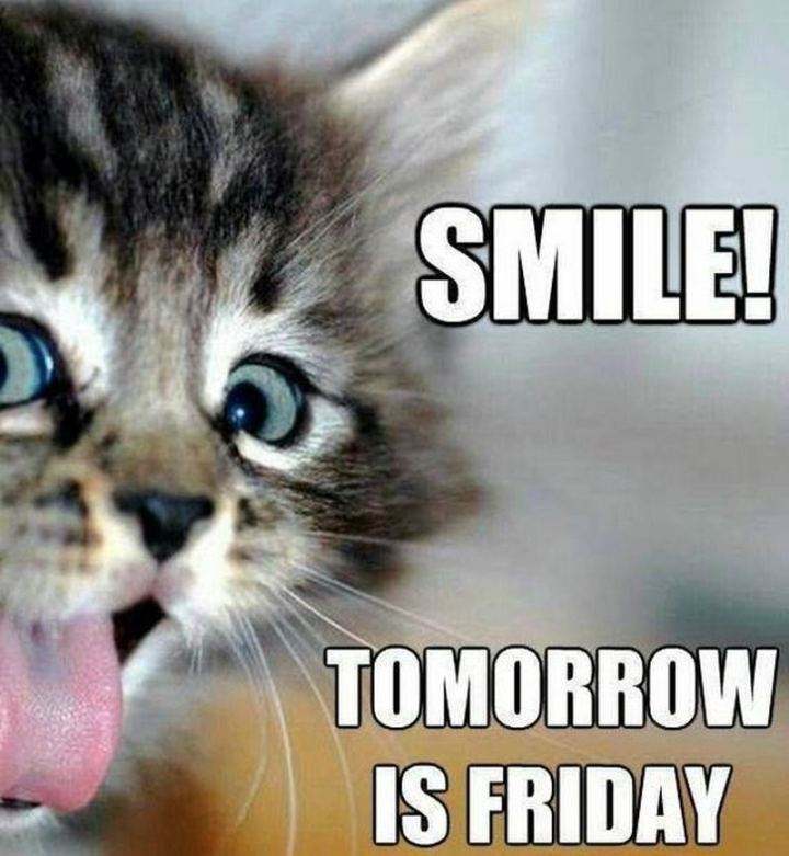"55 ""Almost Friday"" Memes - ""Smile! Tomorrow is Friday."""