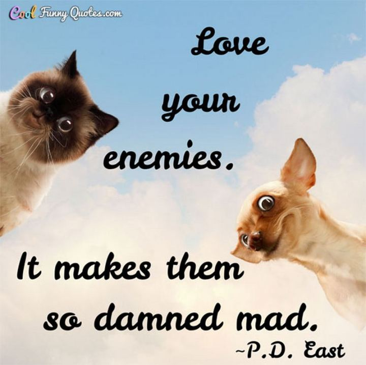 """53 Funny Love Quotes - """"Love your enemies. It makes them so damned mad."""" - P.D. East"""