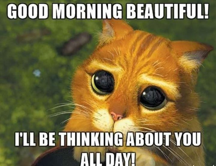"101 ""Have a Great Day"" Memes - ""Good morning beautiful! I'll be thinking about you all day!"""