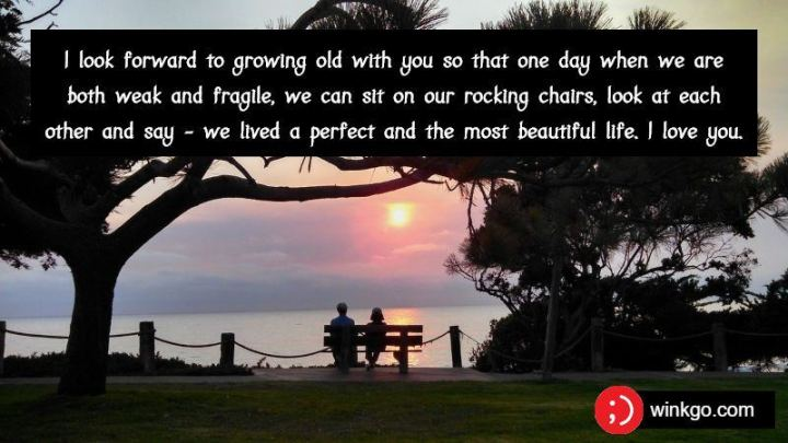 """41 Wife Quotes - """"I look forward to growing old with you so that one day when we are both weak and fragile, we can sit on our rocking chairs, look at each other and say - we lived a perfect and the most beautiful life. I love you."""" - Unknown"""