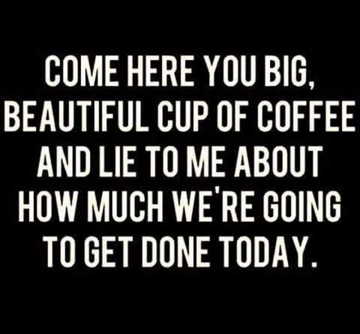 """Come here you big, beautiful cup of coffee, and lie to me about how much we're going to get done today."""