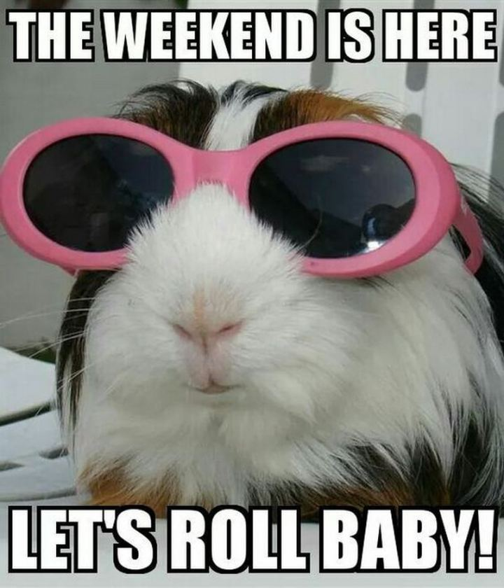 """The weekend is here. Let's roll baby!"""