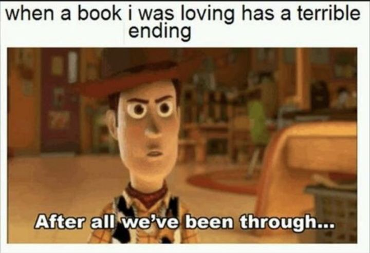 """73 Funny Reading Memes - """"When a book I was loving has a terrible ending: After all we've been through..."""""""