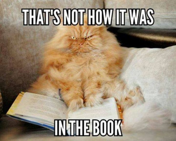 """""""That's not how it was in the book."""""""