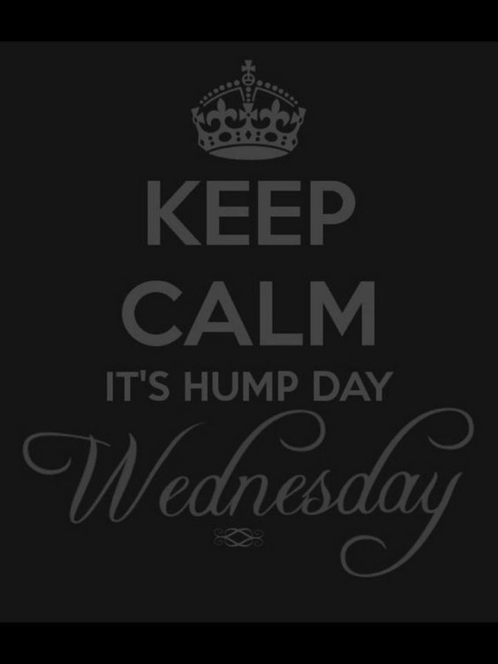"""Keep calm. It's hump day Wednesday."""