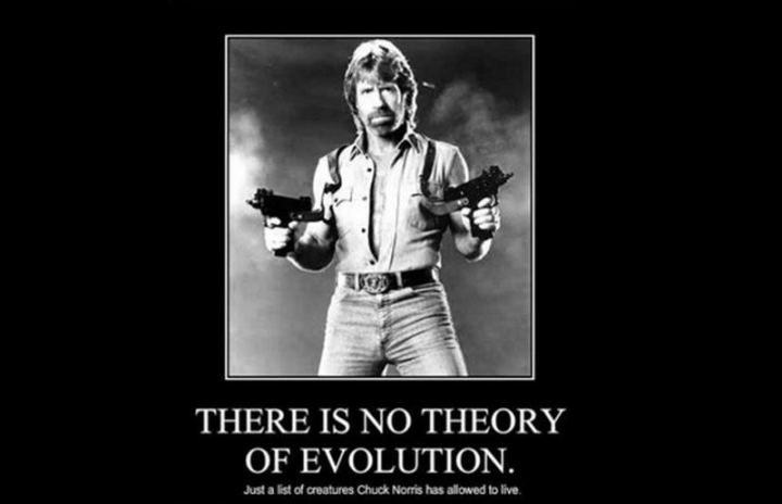 """There is no theory of evolution. Just a list of creatures Chuck Norris has allowed to live."""