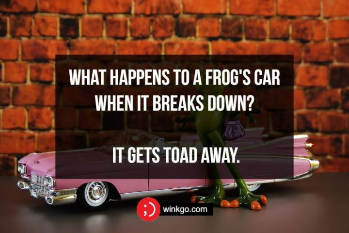What happens to a frog's car when it breaks down? It gets toad away.