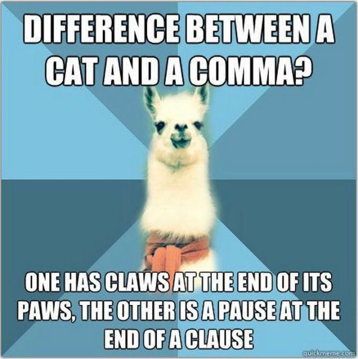 """57 Grammar Memes - """"Difference between a cat and a comma? One has claws at the end of its paws, the other is a pause at the end of a clause."""""""