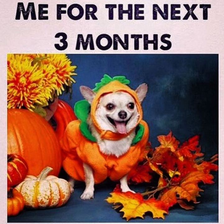 """""""Me for the next 3 months."""""""
