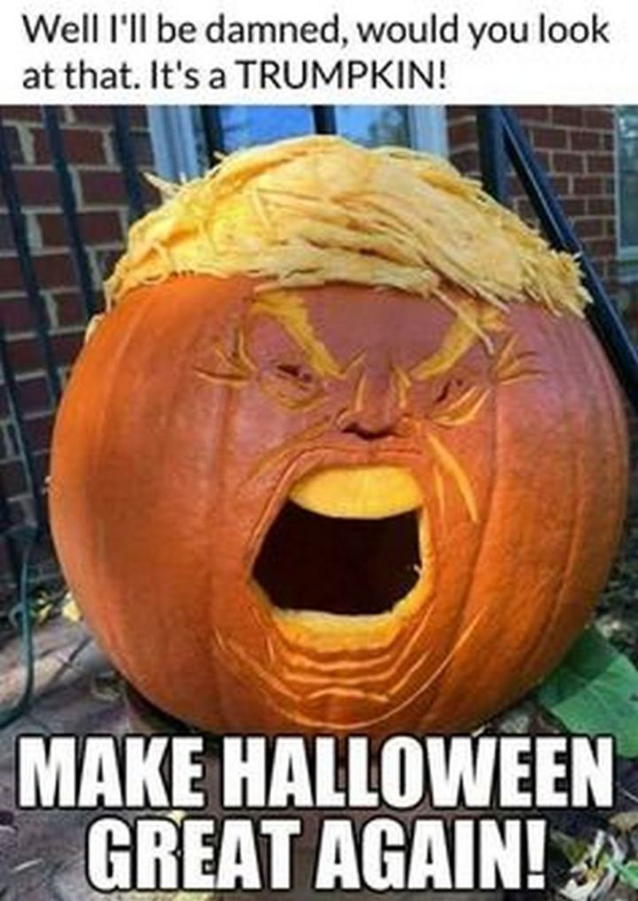 """""""Well I'll be damned, would you look at that. It's a TRUMPKIN! Make Halloween great again!"""""""