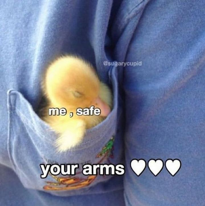 """""""Me, safe. In your arms."""""""