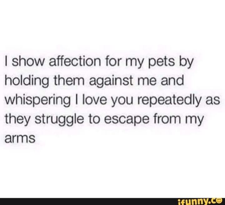 """""""I show affection for my pets by holding them against me and whispering I love you repeatedly as they struggle to escape from my arms."""""""
