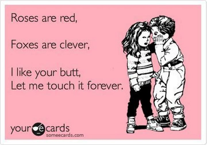 """""""Roses are red, foxes are clever, I like your butt, let me touch it forever."""""""
