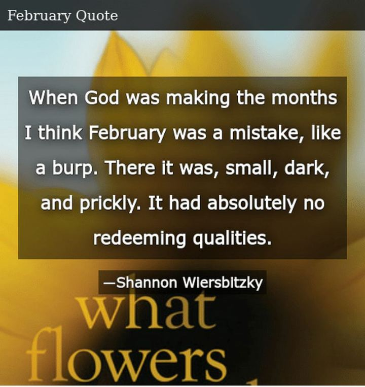 """""""When God was making the months I think February was a mistake, like a burp. There it was, small, dark, and prickly. It had absolutely no redeeming qualities."""" - Shannon Wiersbitzky"""