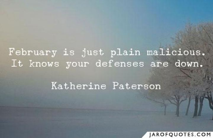 """""""February is just plain malicious. It knows your defenses are down."""" - Katherine Paterson"""