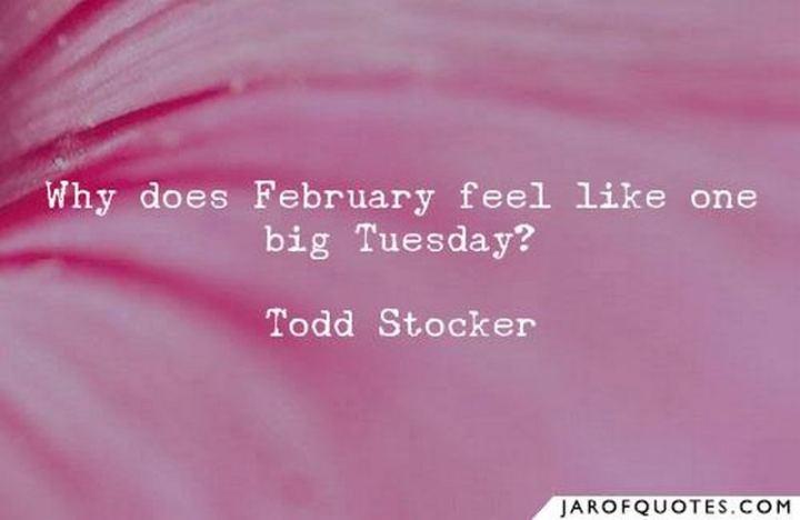 """Why does February feel like one big Tuesday?"" - Todd Stocker"