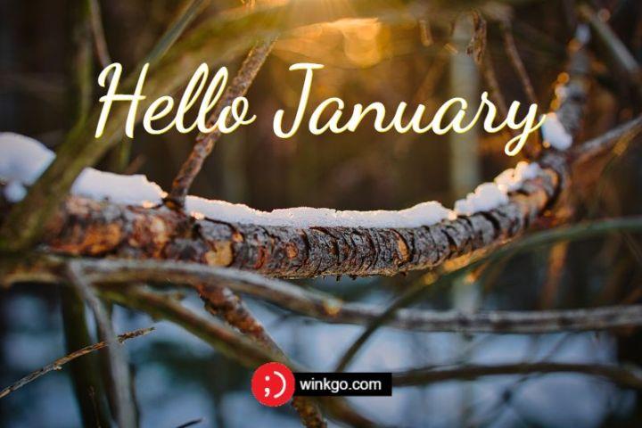 """""""Hello, January."""""""