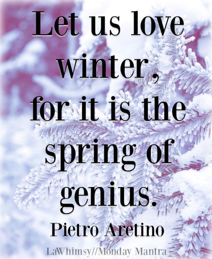"""Let us love winter, for it is the spring of genius."" - Pietro Aretino"