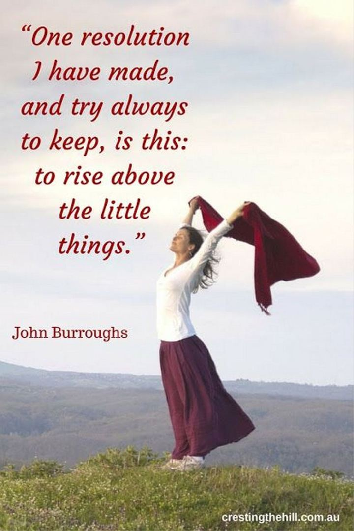 """One resolution I have made, and try always to keep, is this - to rise above the little things."" - John Burroughs"