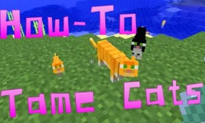 How to tame a cat in Minecraft ‣ TechReen