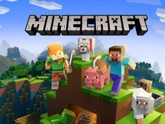 How To Find Your Server IP Address In Minecraft ‣ TechReen
