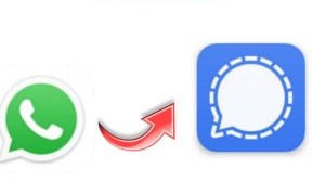 How To Move WhatsApp Group Chats To Signal