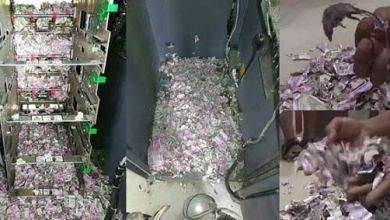 Photo of Rats Break Into ATM Machine, Eat Up Money Worth N17 Million