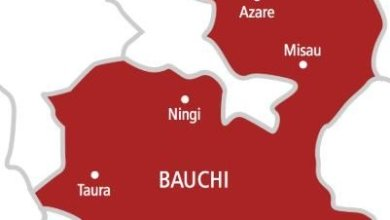 Photo of Over 300 die in Bauchi within 14 days – Residents