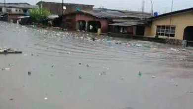 Photo of Flood sweeps away four-year – old in Lagos