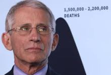 Photo of Fauci predicts 100,000 new COVID-19 cases per day if US can't control outbreaks