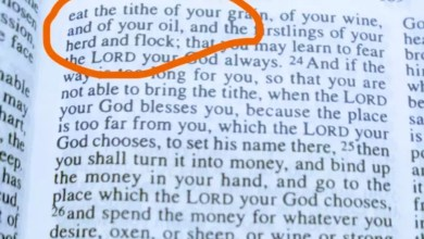 Photo of Stop Giving Your Tithes To Men Of God, See The True Instructions The Bible Gave On Tithing