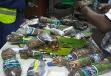 Photo of NDLEA nabs Cyprus bound student with 13.55 kg of Cannabis