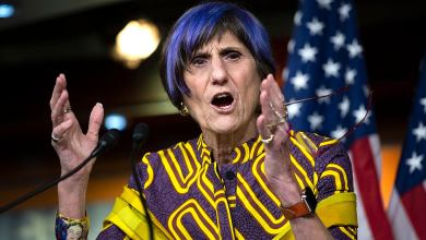 DeLauro racks up labor endorsements for Appropriations gavel