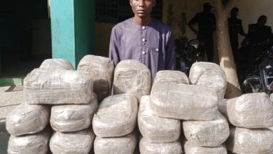 Mother and son arrested with 49 parcels of Indian hemp