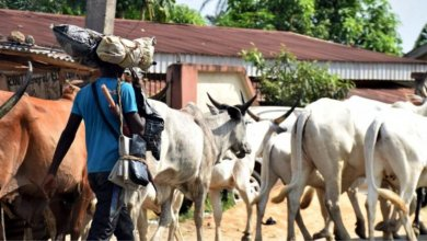 Red alert in Southwest as quit notice to herders expires