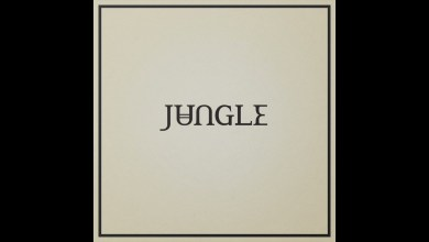 DOWNLOAD MP3: JUNGLE - CAN'T STOP THE STARS
