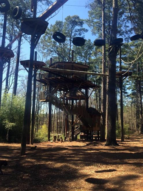 Treehouse~IMG_4348